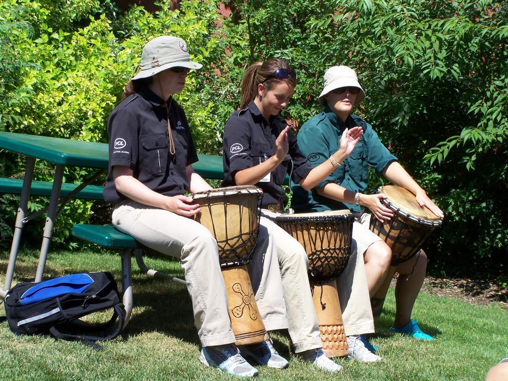 Zoo Drums 1