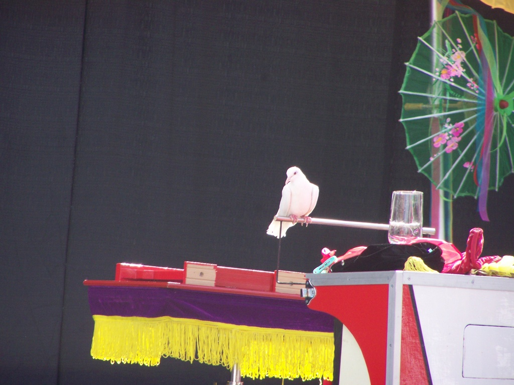 Chinatown 2007-08-18 035
