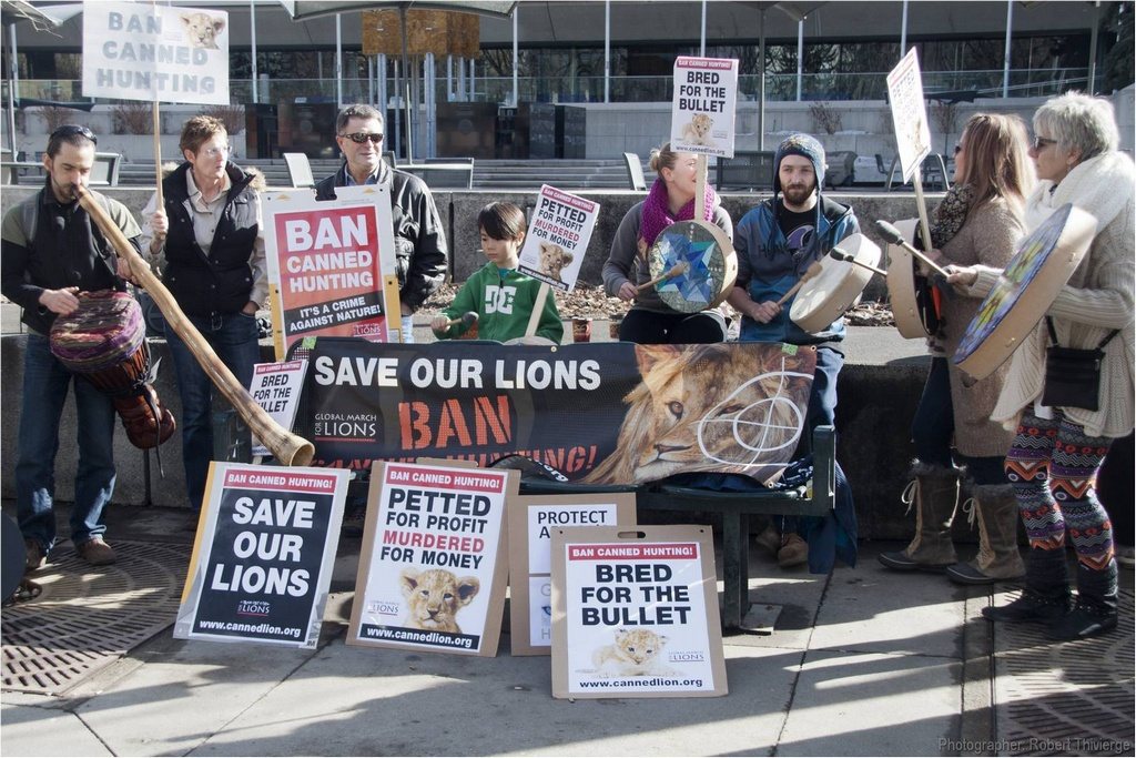 Ban Canned Lions