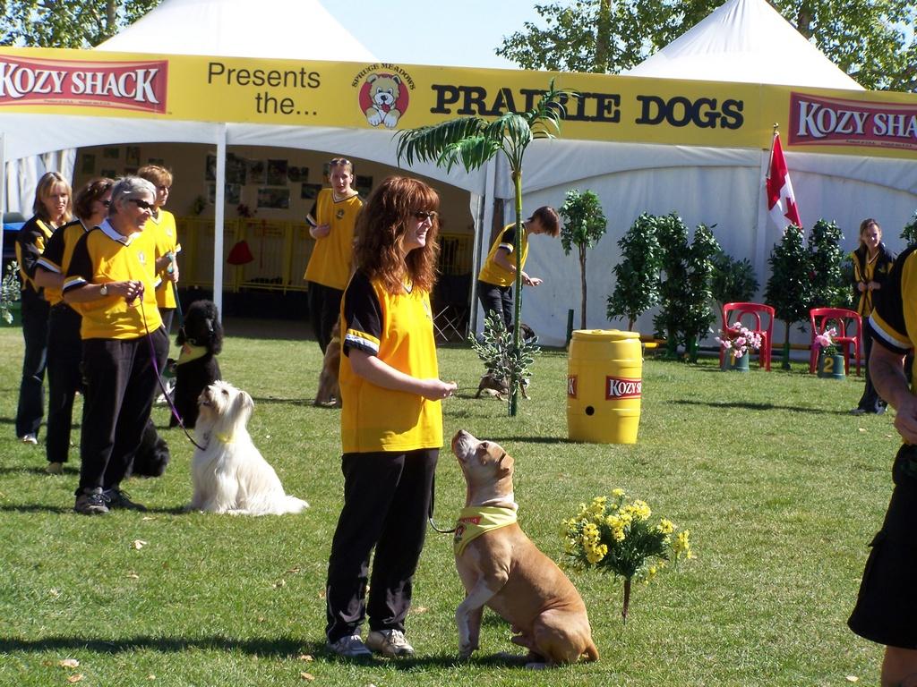 Prairie Dogs 2007-09-09 01