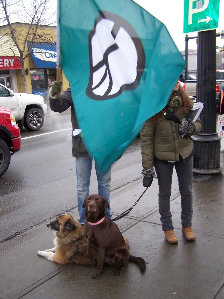 Peace flag at Tomkins 2008-03-15 55