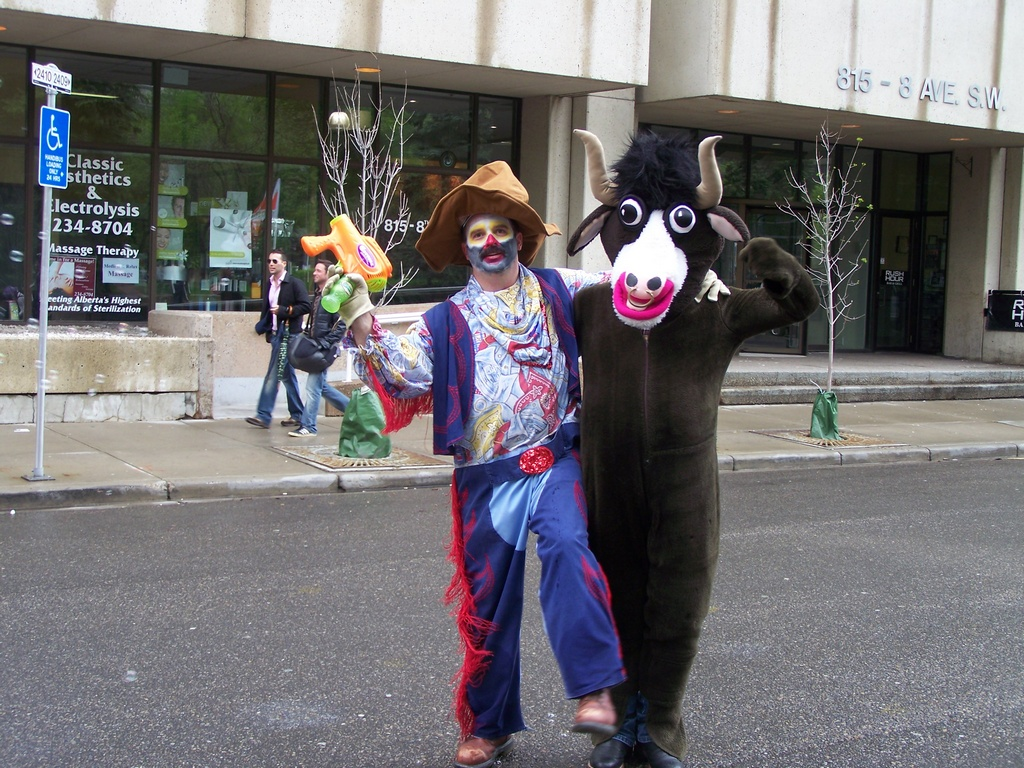Clown farmer and cow come together