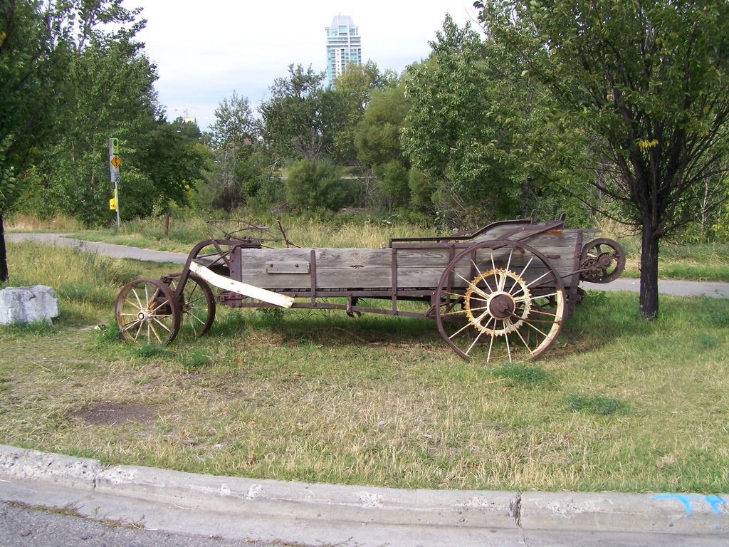 Lonely Wagon 1