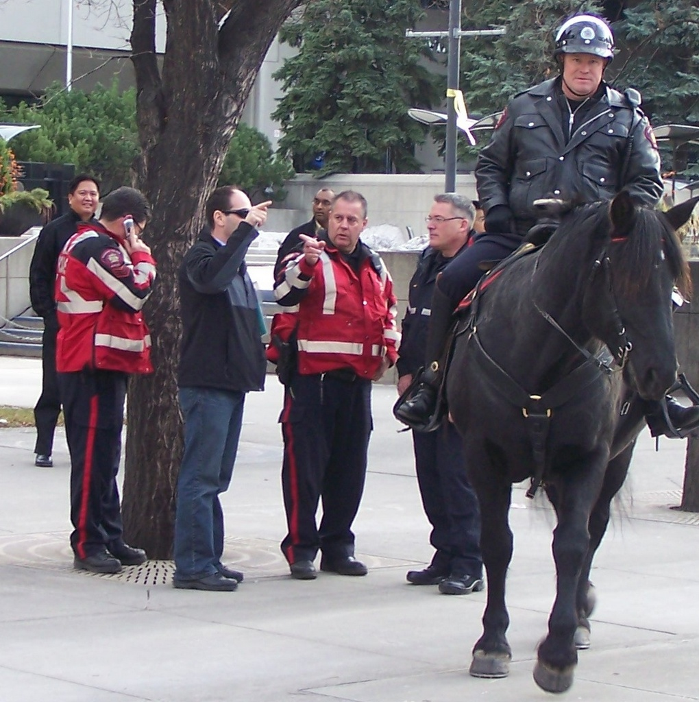 Calgary Mounted Officer