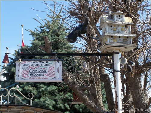 Cow Town Moovers sign and bird house