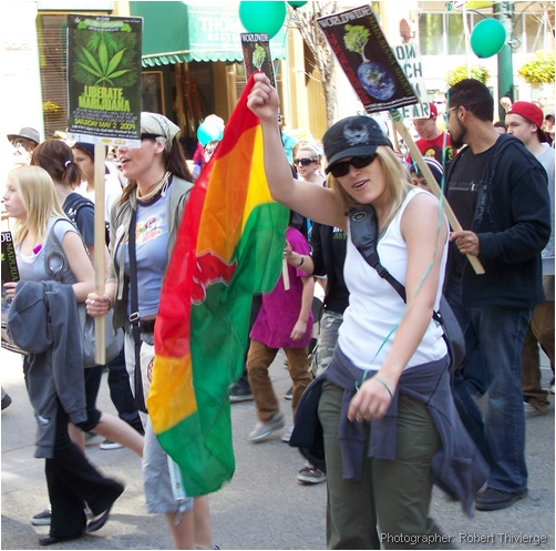Flagging for cannabis in Calgary