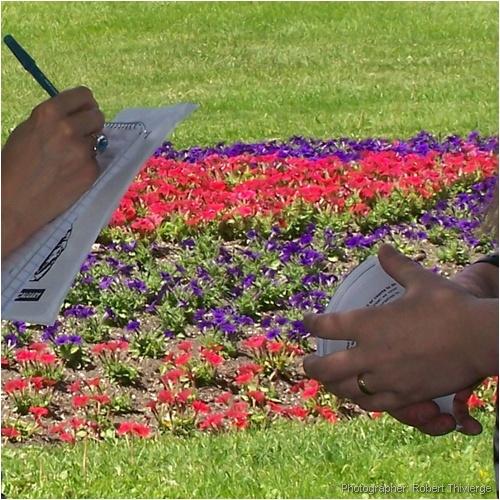 Reporter interviews activist by garden