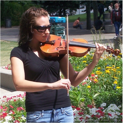 Violin by the flowers
