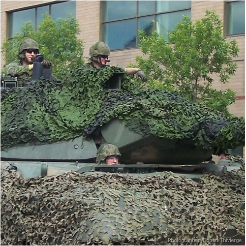 Camouflaged parade entry