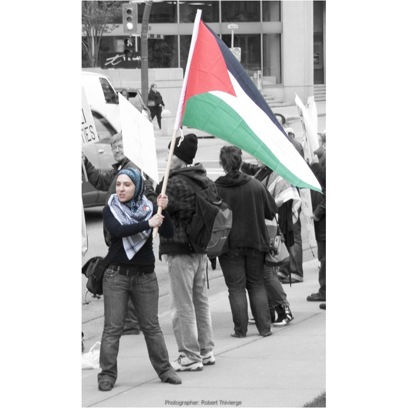 Waving the flag at Gaza protest