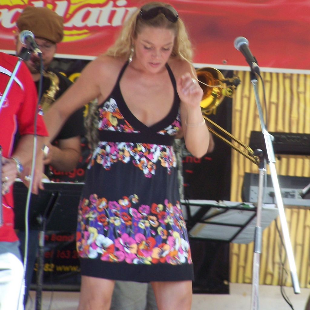 Fiestaval Preview 30