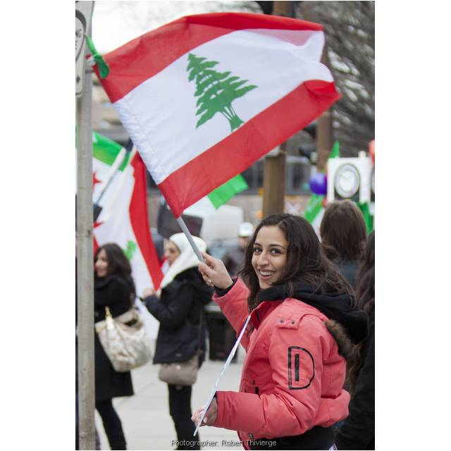 Lebanese Support for Syria