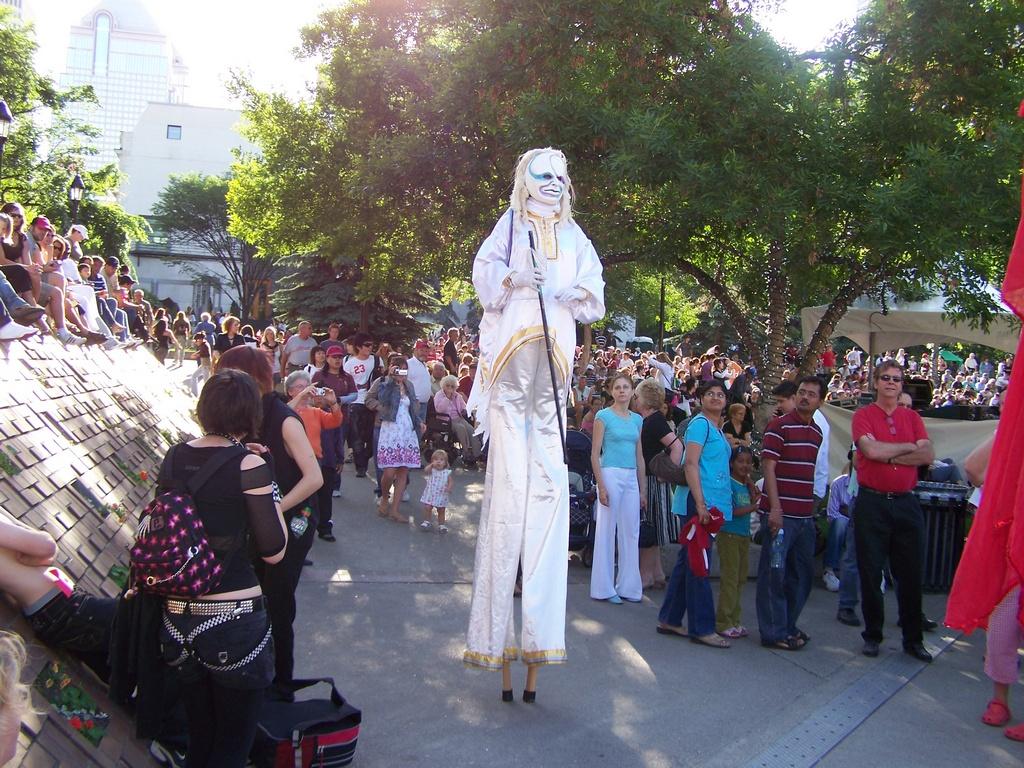 White stilts 2