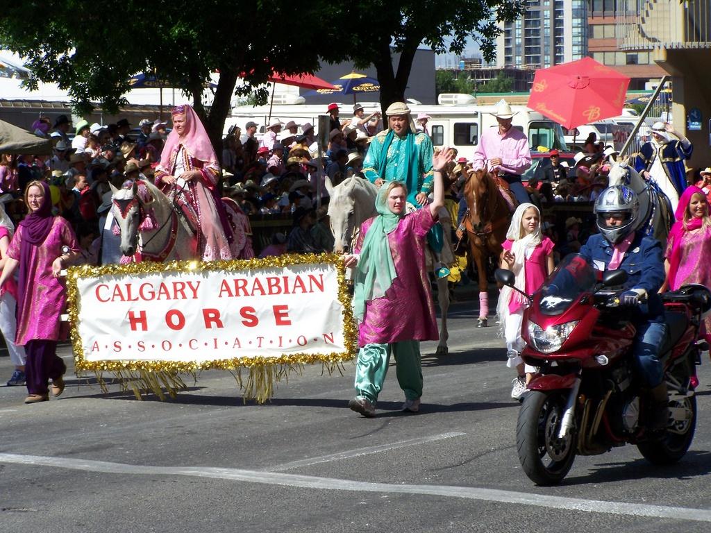 Calgary Arabian Horse Assoc 1
